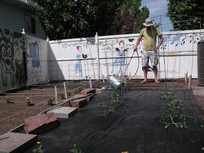 planting a garden, laying it out