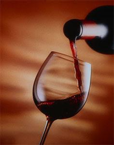 foto+vinhos Vinhos