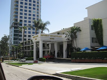Trip Beverly Hills - Daily Connoisseur