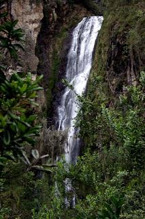 Natura Repblica Dominicana un paraso tropical