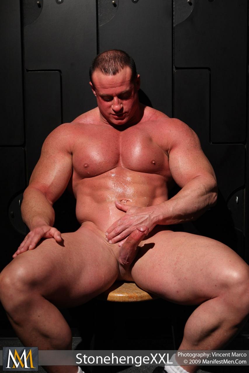 gay muscle bull