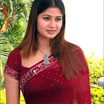 Sageetha Sexy In Red Saree