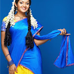 Karthika Sexy In Half Saree
