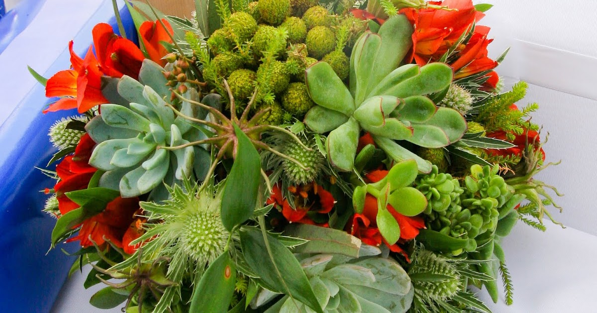 Bloomers Flowers Blog - Wilmington