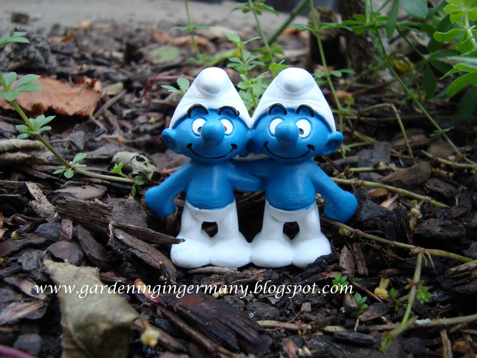Gnome 4: Gardening In Mannheim, Germany: A Gnome's Tale Of
