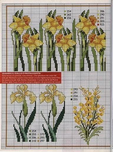 Punto de Cruz GRATIS Cenefas de bulbosas y flores de