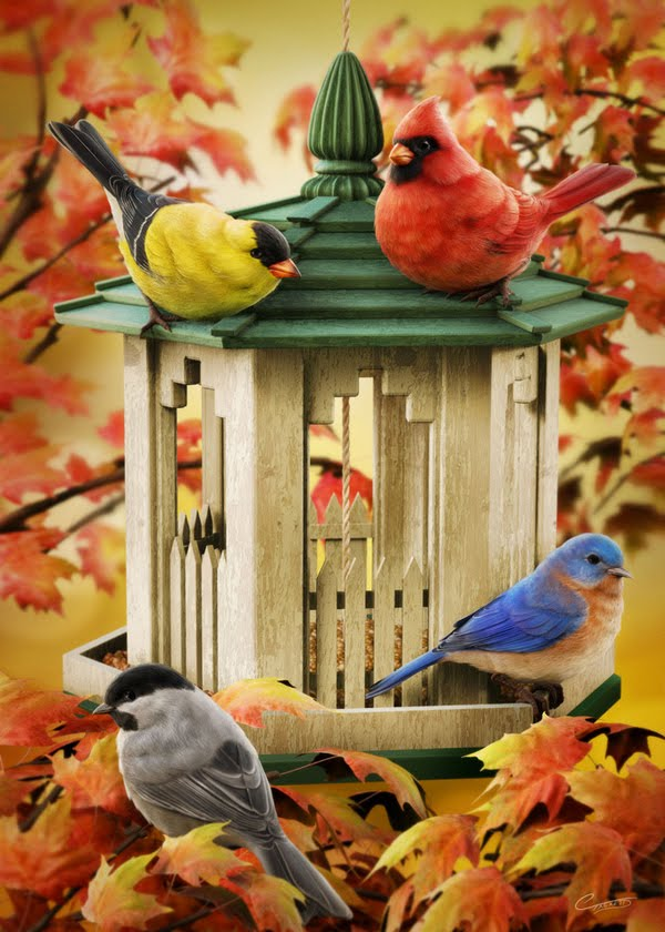 17 Best images about Beautiful Birds on Pinterest | Robins ... |Fall Bird Paintings