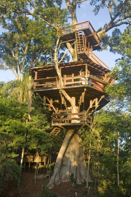What U0026 39 S Up  Trouvaillesdujour  Treehouses  A New Style Of Living  Part 2