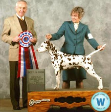 Argus Goes Best In Show