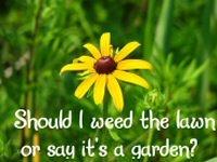 I love my garden!