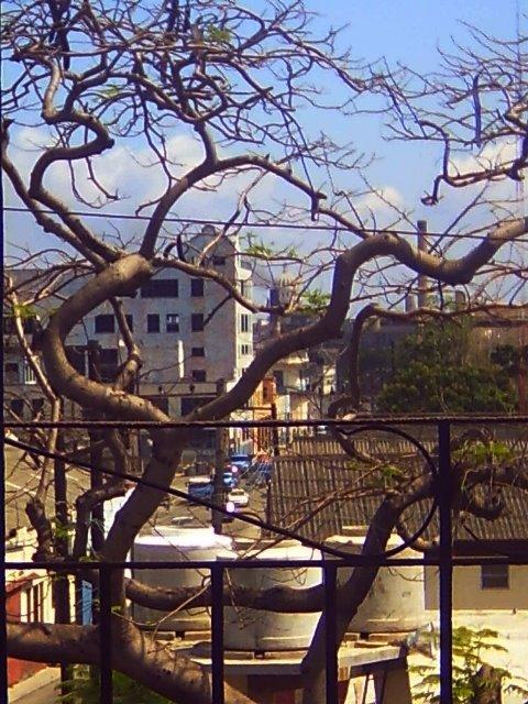 desde el balcón de la calle Fábrica