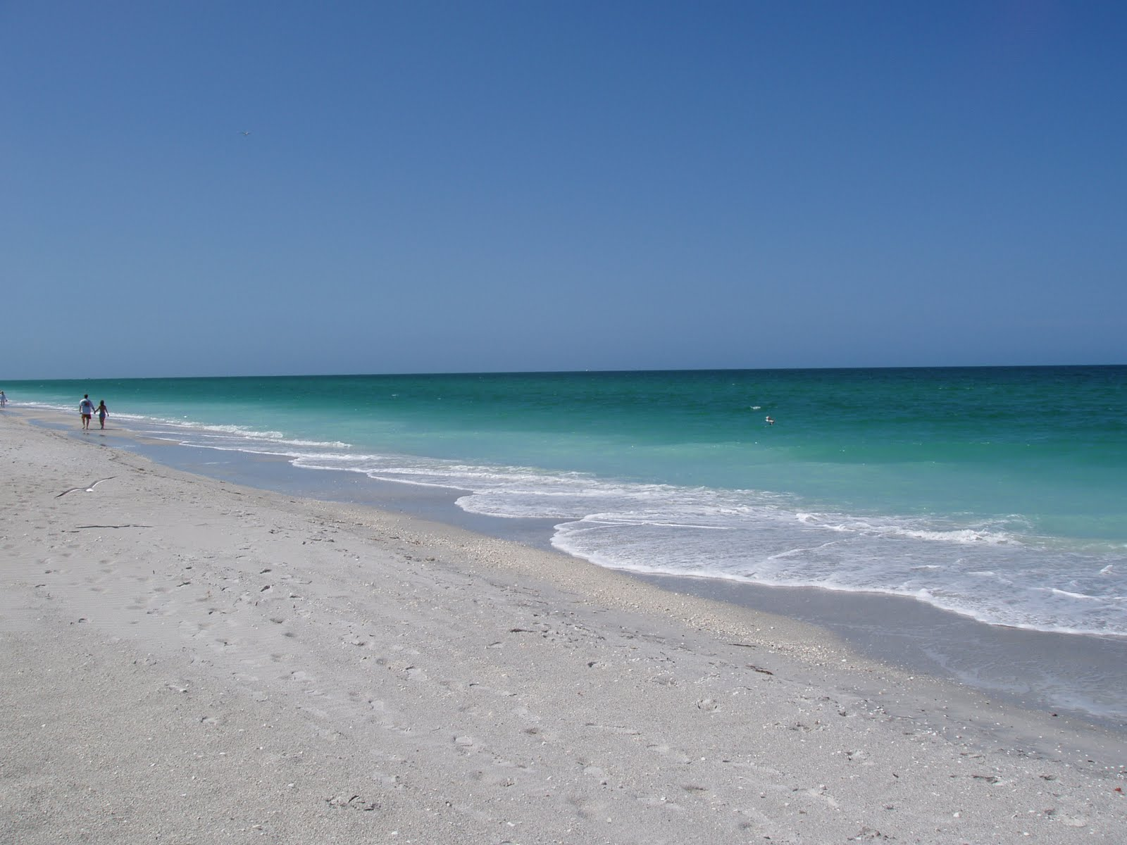 Florida Gulf Coast Info Boca Grande Beach