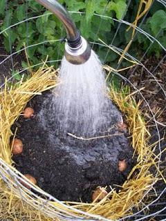 Humedecer compost
