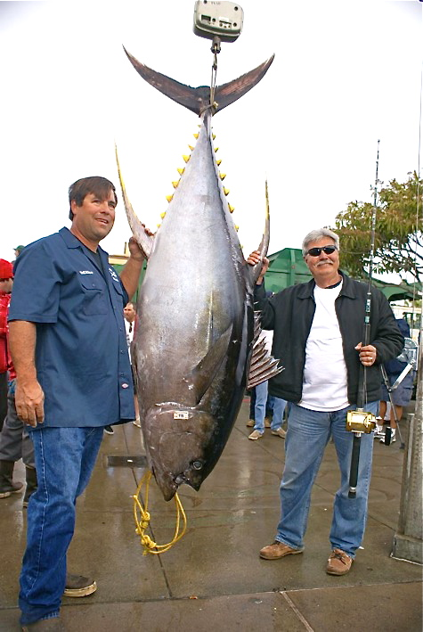 Florida Keys Charterboat Fishing, Islamorada Fishing ...