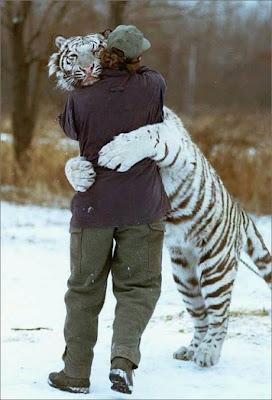 Tiger+Hug+ok.jpg
