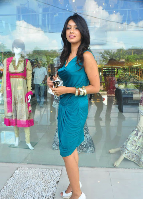 payal gosh new looking actress pics