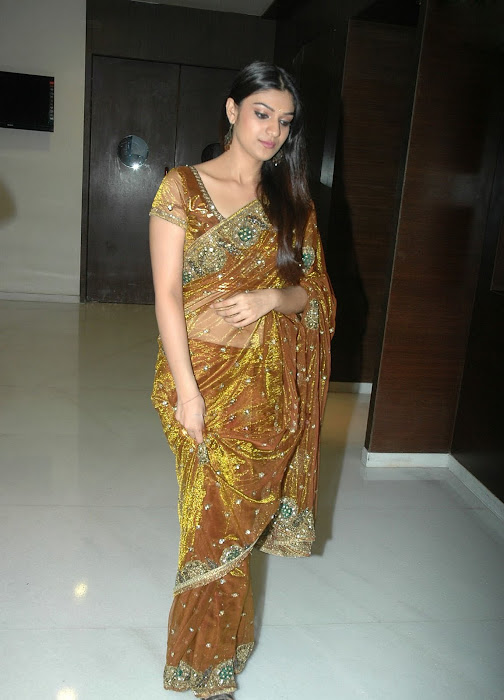 siya new spicy in saree hot images