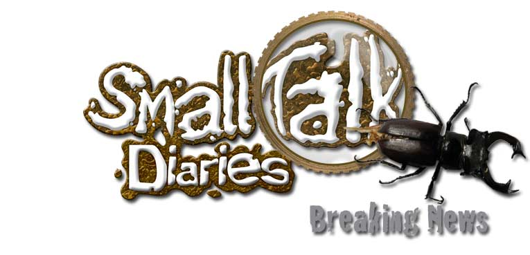 smalltalk diaries news