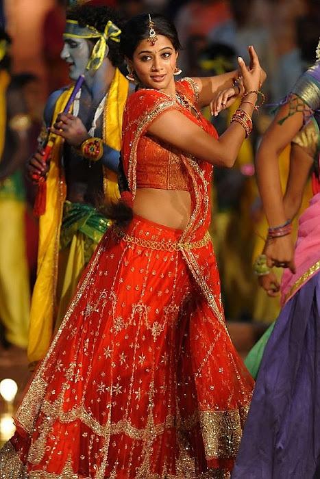 priyamani in saree from pravarakhyudu photo gallery