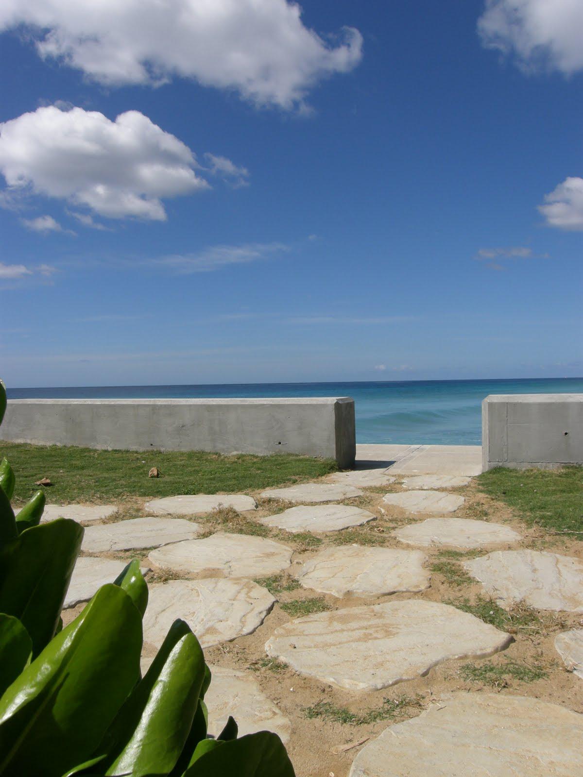 A Bajan Tour Girl Exploring Barbados A Walk Along The