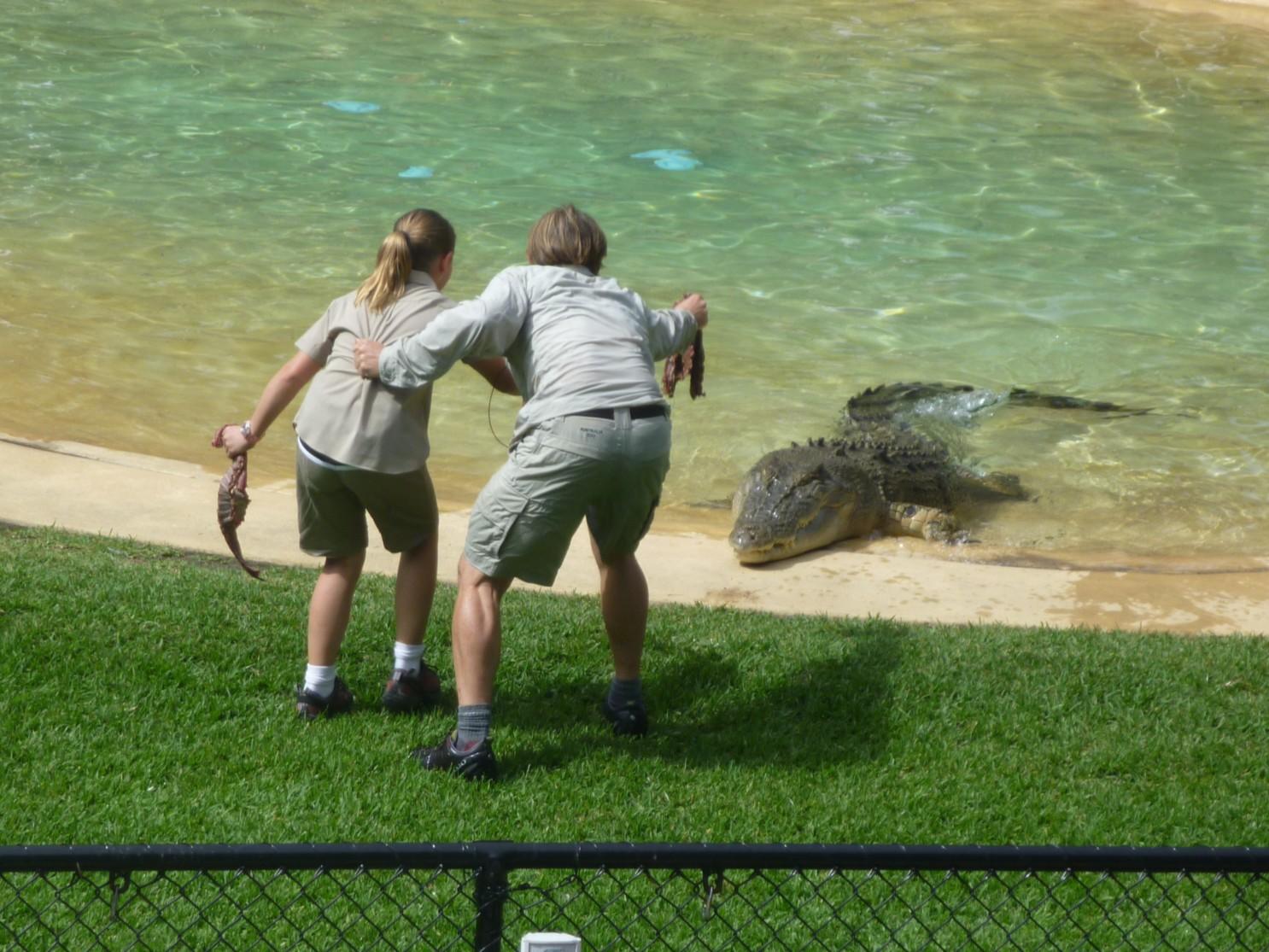 Bindi Irwin Zoo