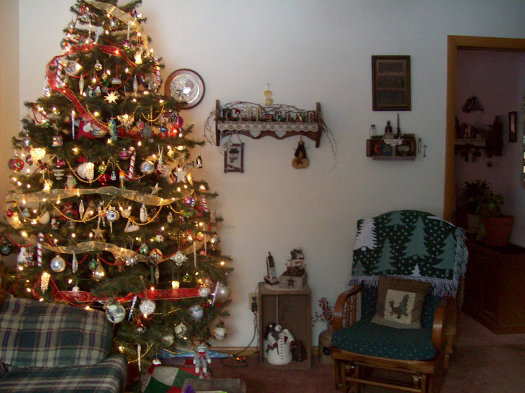 Our Christmas Tree - 2010