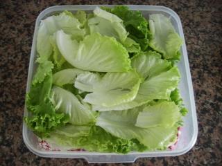 como_passei_a_comer_mais_saladas_alface_pronta_a_comer