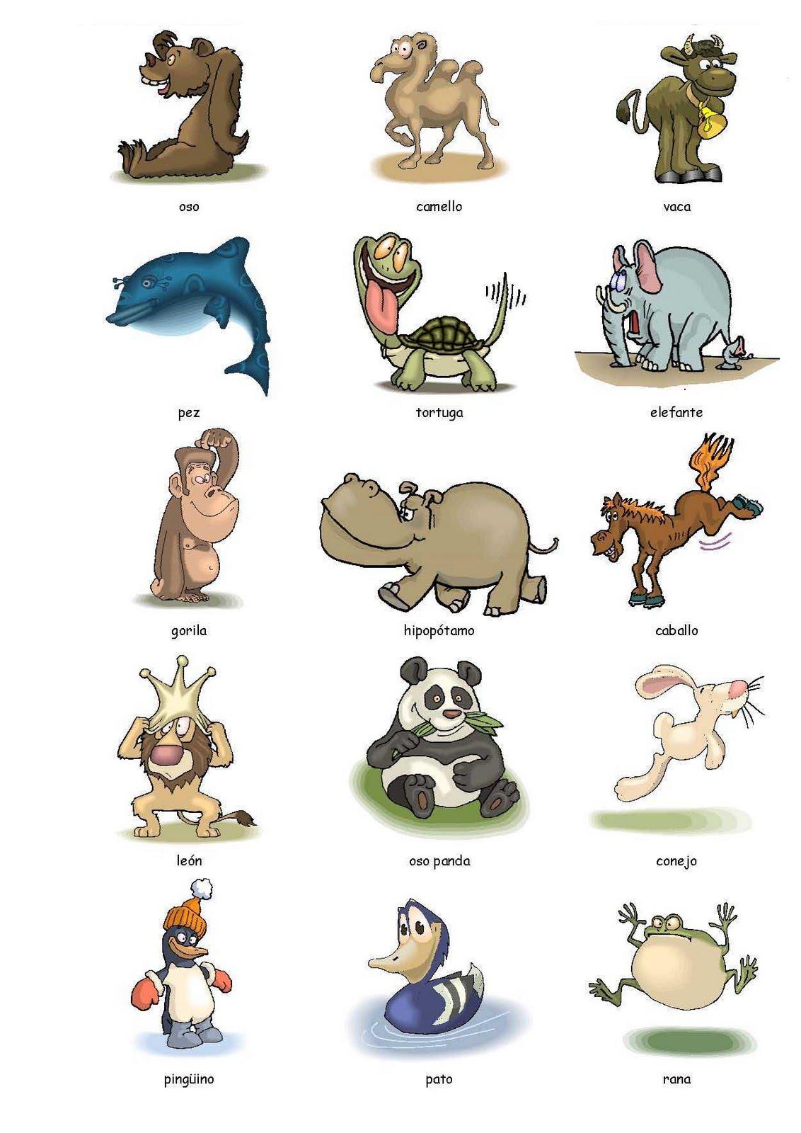 Animals In English Flashcards