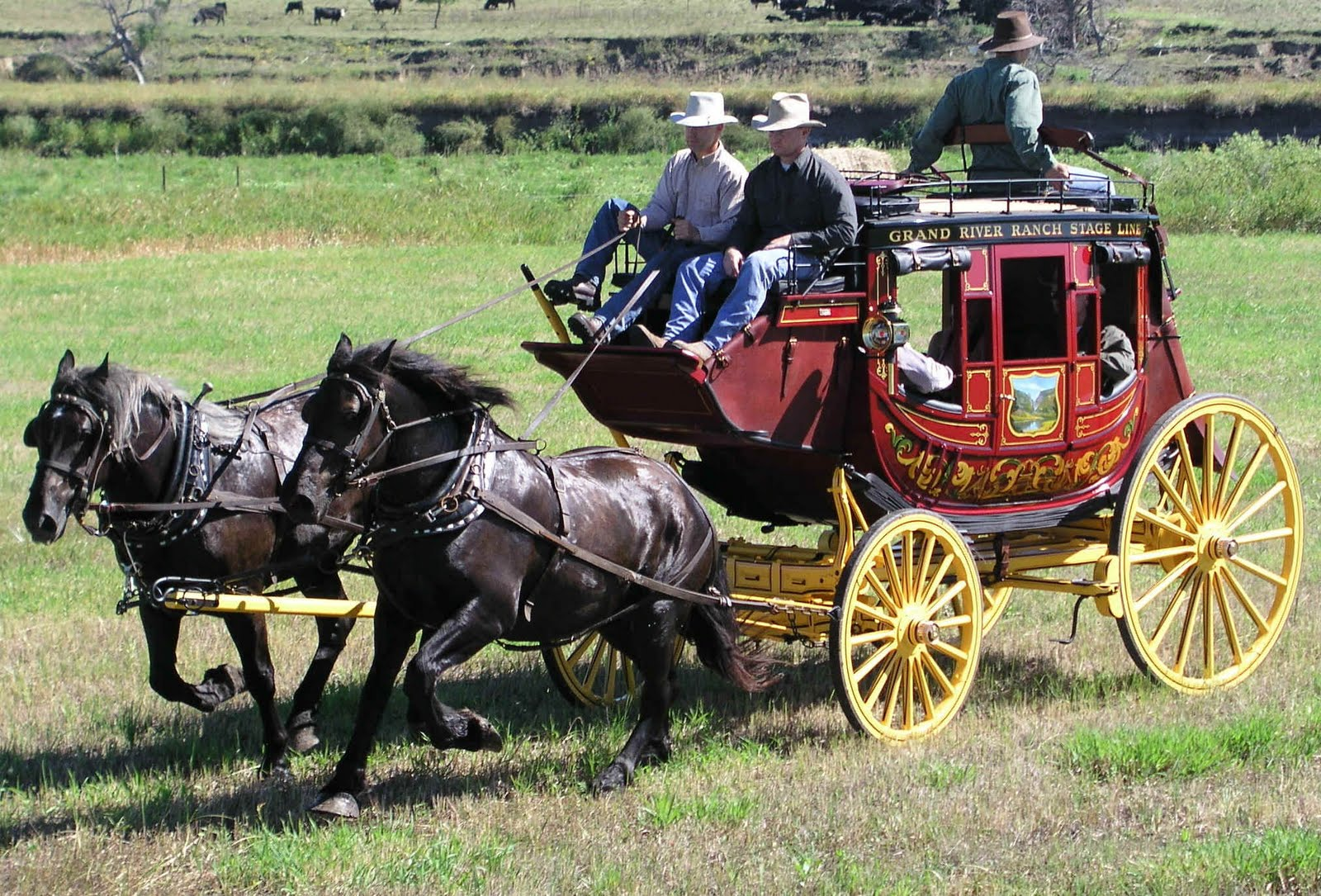 Andi Carter's Blog: Old West Wednesday: Stagecoach Robbers!