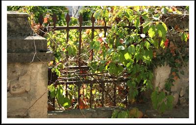 une p 39 tite balade miribel du soleil sur les pierres les arbres et les fleurs. Black Bedroom Furniture Sets. Home Design Ideas