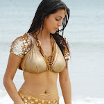 Hot Navel Show Of South Indian Actress