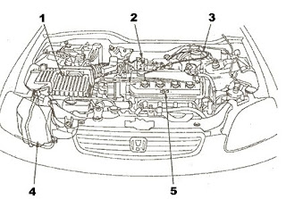 D16y5 Engine Diagram, D16y5, Get Free Image About Wiring