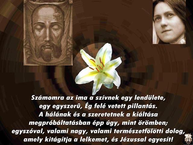 kis szent teréz idézetek Mindennapok: Kis Szent Teréz [8]