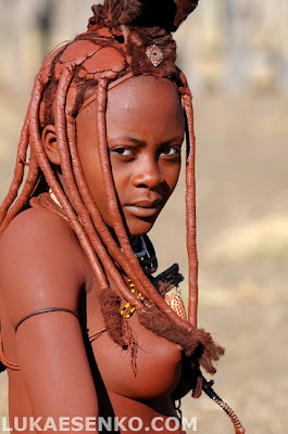 hottentot tribe of africa