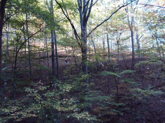 the cycling addiction return to armuchee fouche gap route