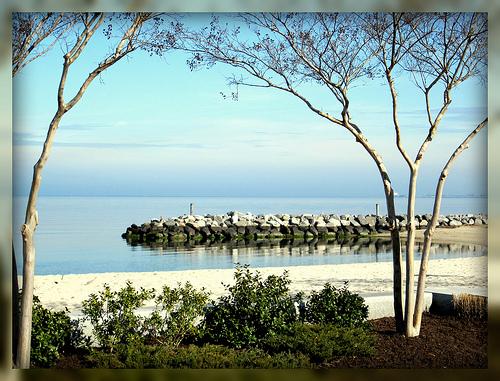 Home Sweet Rome: Home Sweet....Williamsburg? |Williamsburg Beach