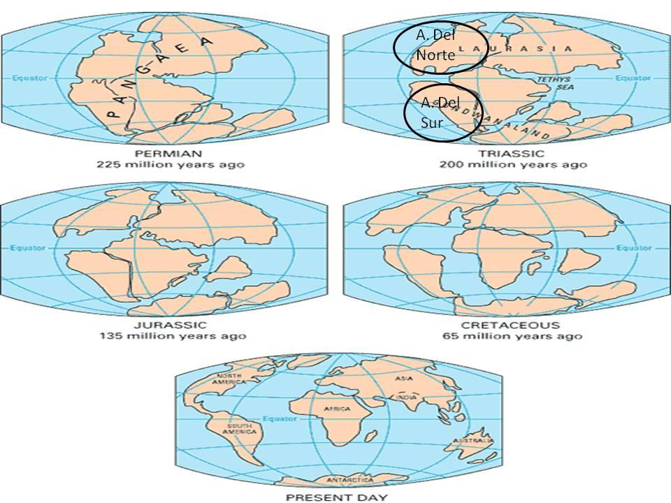 Geografia Y Economia Criterios De Division De America