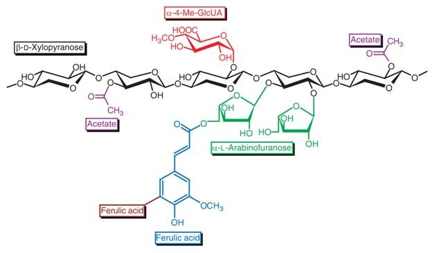 Biomass  Biofuels  And Biochemicals  Enzymatic