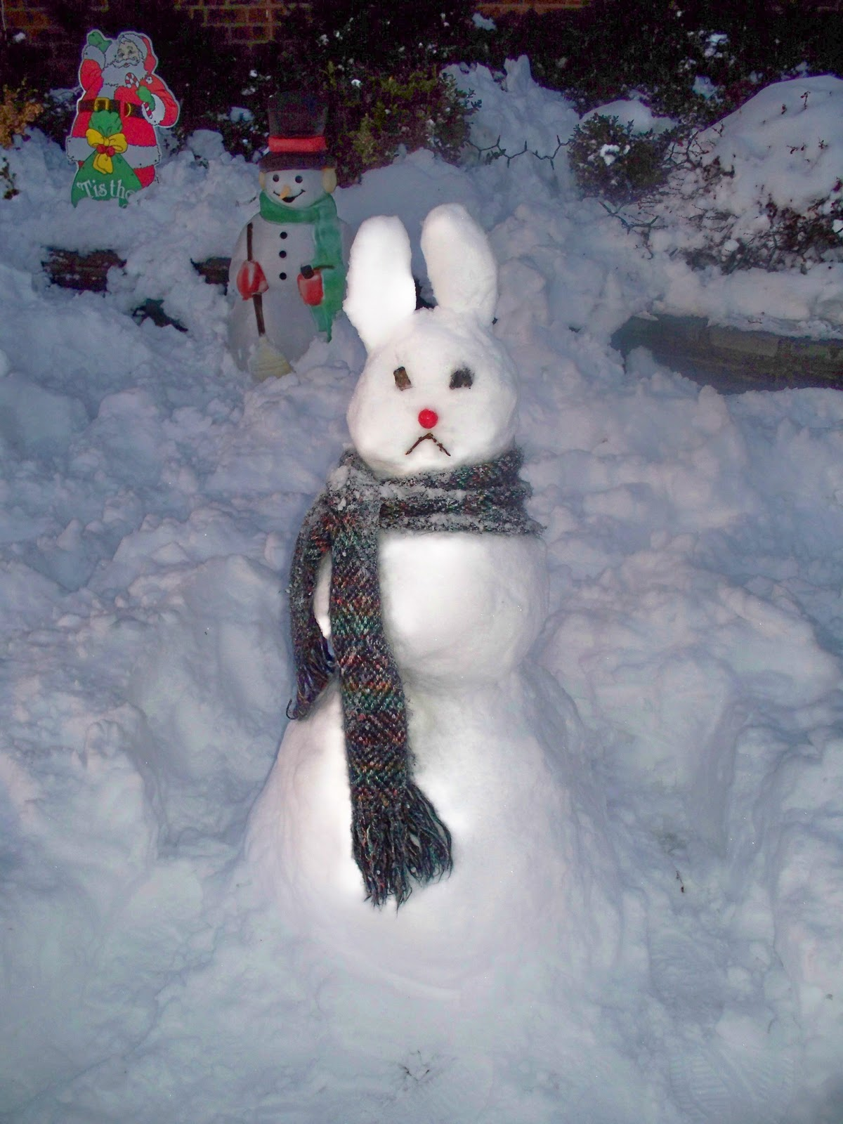Bunnymond snow bunnies