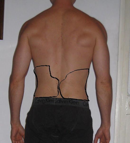 obese exveemon back - photo #15