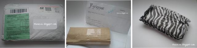 Fyrinnae