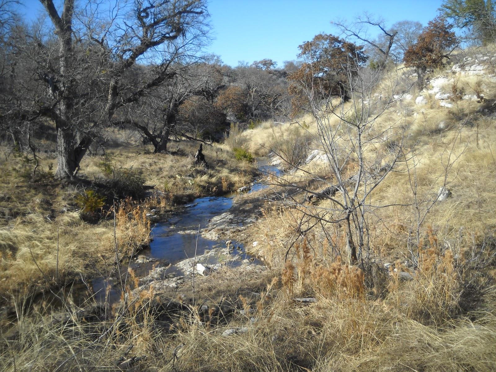 Art S Bayfield Almanac 2 07 11 Blue Mountain Peak Ranch