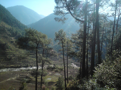 Lovely morning views on the way to Birahi from Uttarkashi