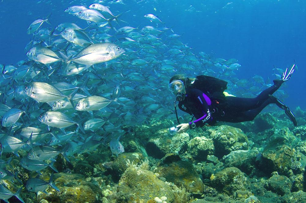 atuh-beach Best Things To Do In Nusa Penida Island