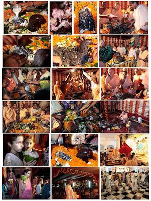 Mayapur Katha: Hamsavahan (Lord Shiva) visits ISKCON Mayapur