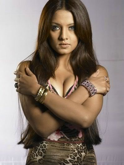 Bollywood Movies Events News Gossips Celina Jaitley Hot -2026