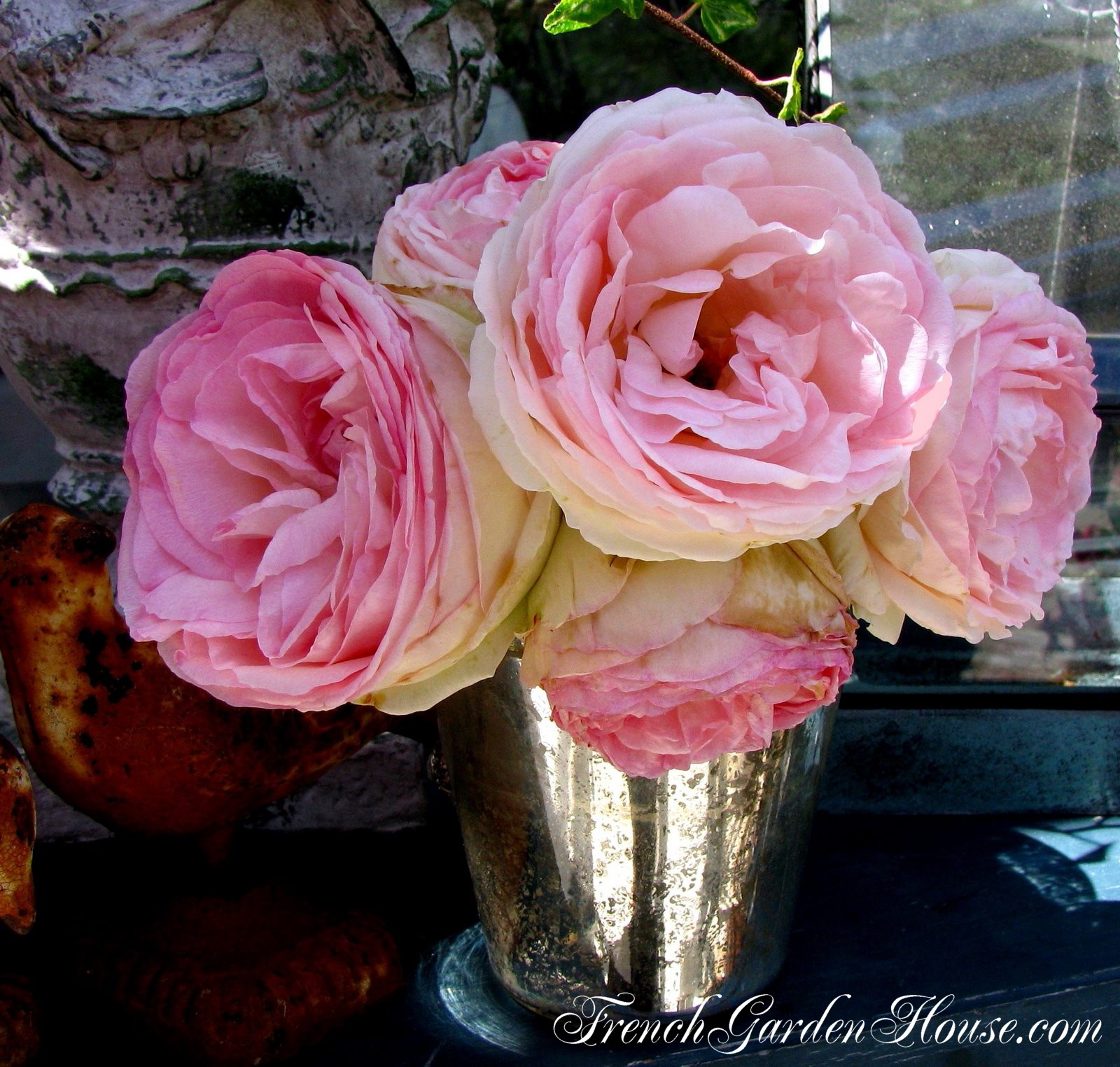 Take care of cut roses ultimate rose care mightylinksfo