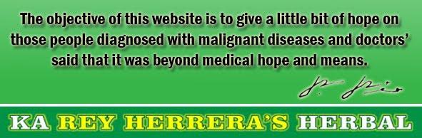 www.rehherbalonline.net