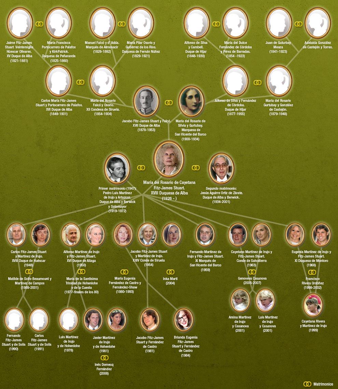 Genealogía | Fundación Sonría