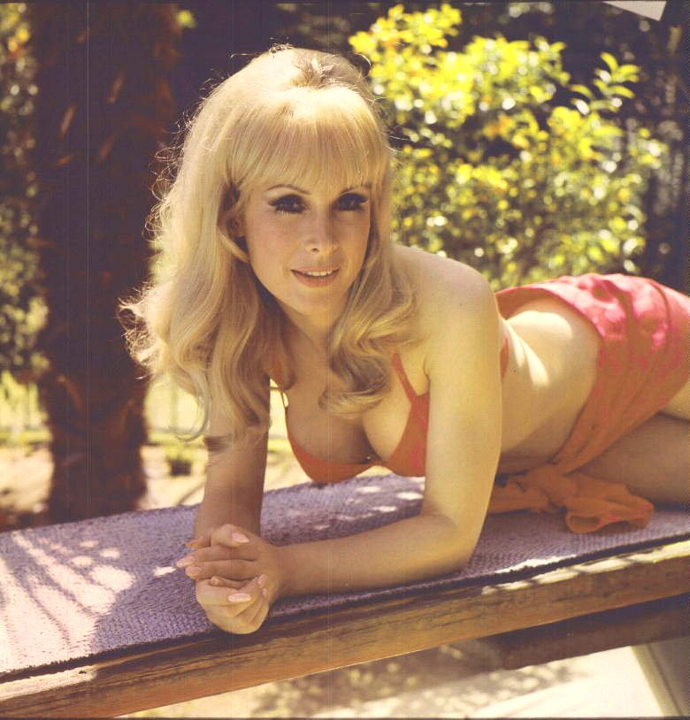 Barbara eden i dream of jeannie porn think, that